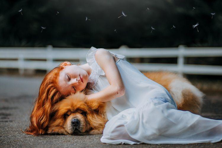 adorable-animal-beautiful-573258